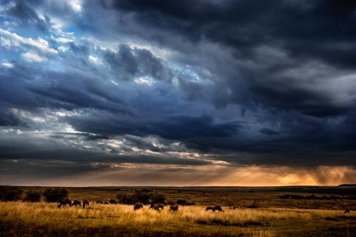 Chasing African Skies 1
