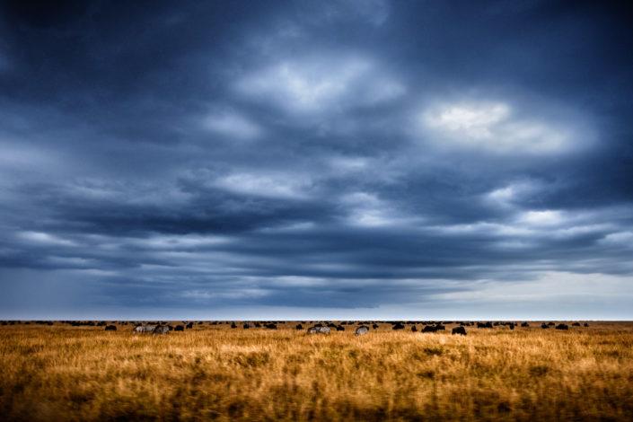 Chasing African Skies 3